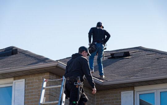 dak inspecteren